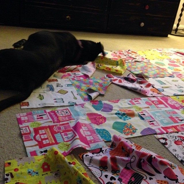 """Dogs Who """"Sew"""""""