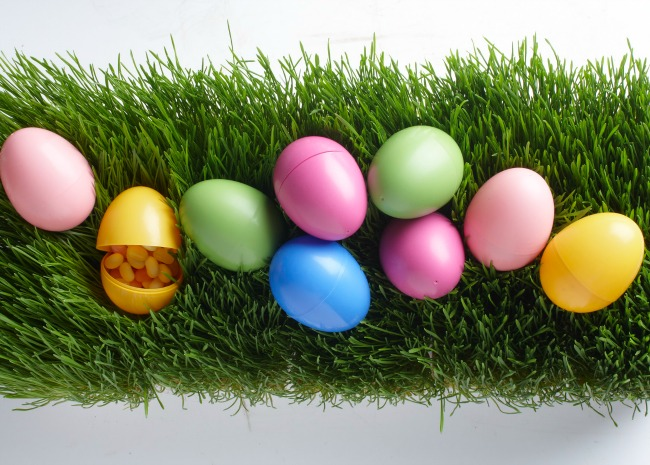 101869642-easter-egg-hunt-photo-by-meredith-650x465