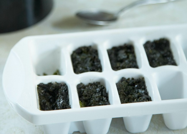 Freezing Pesto in Serving Sized Portions