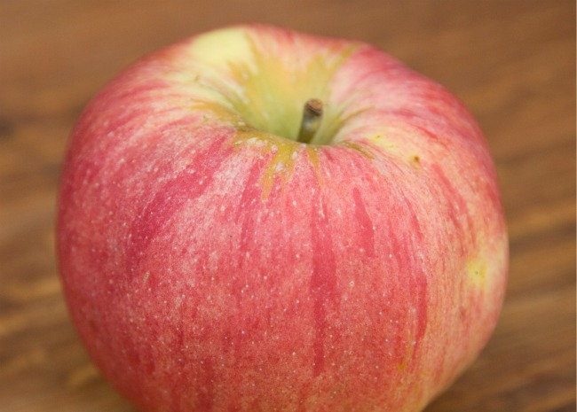 101166002-Northern-Spy-Apple-Photo-by-Meredith-resized.jpg