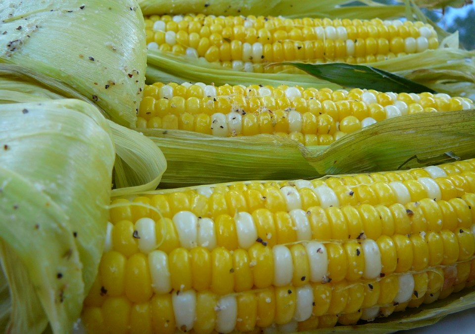 Grilled Corn on the Cob_Photo by Molly