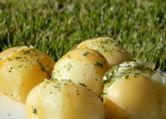 Lengenberg's Boiled Potatoes