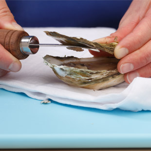Step 4: Detach the Oyster from the Top Shell