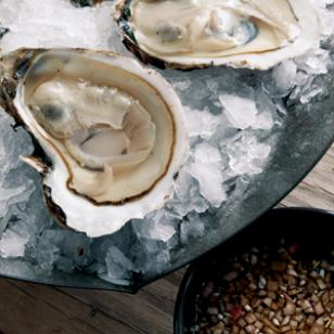 oysters_new.jpg