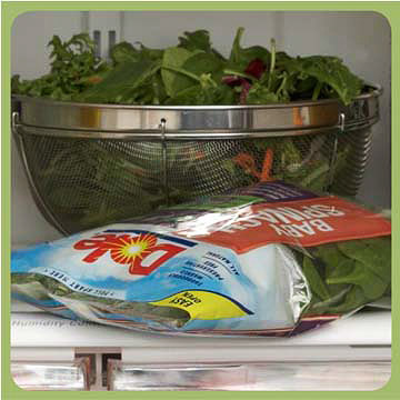 Packaged Salad Mixes