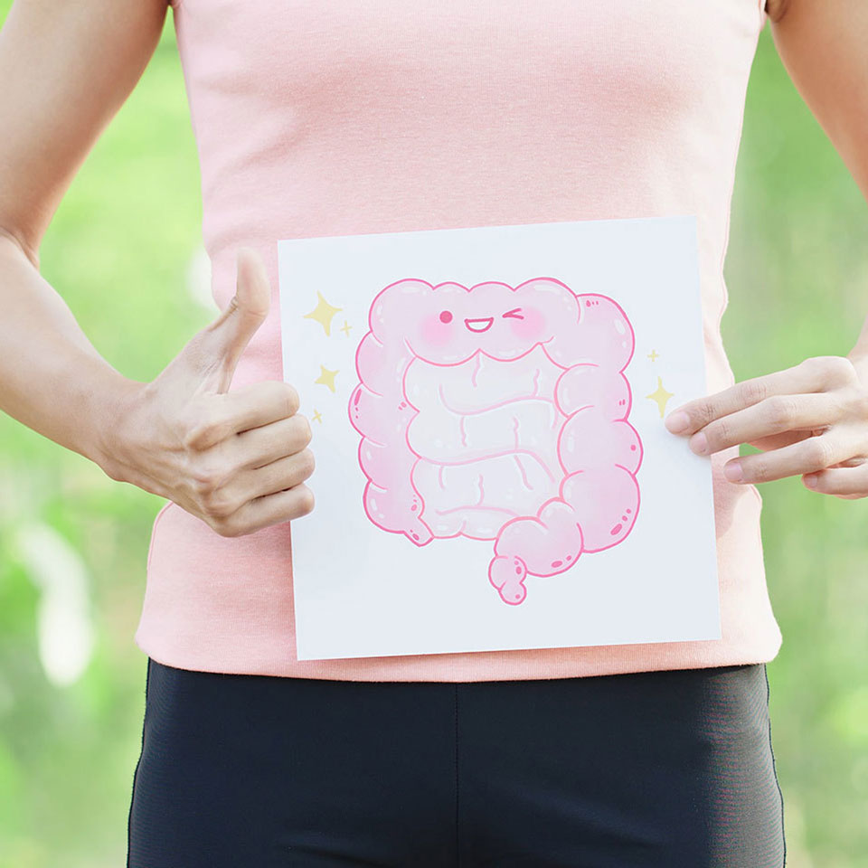 woman holding cute illustration of large intestines in front of her belly