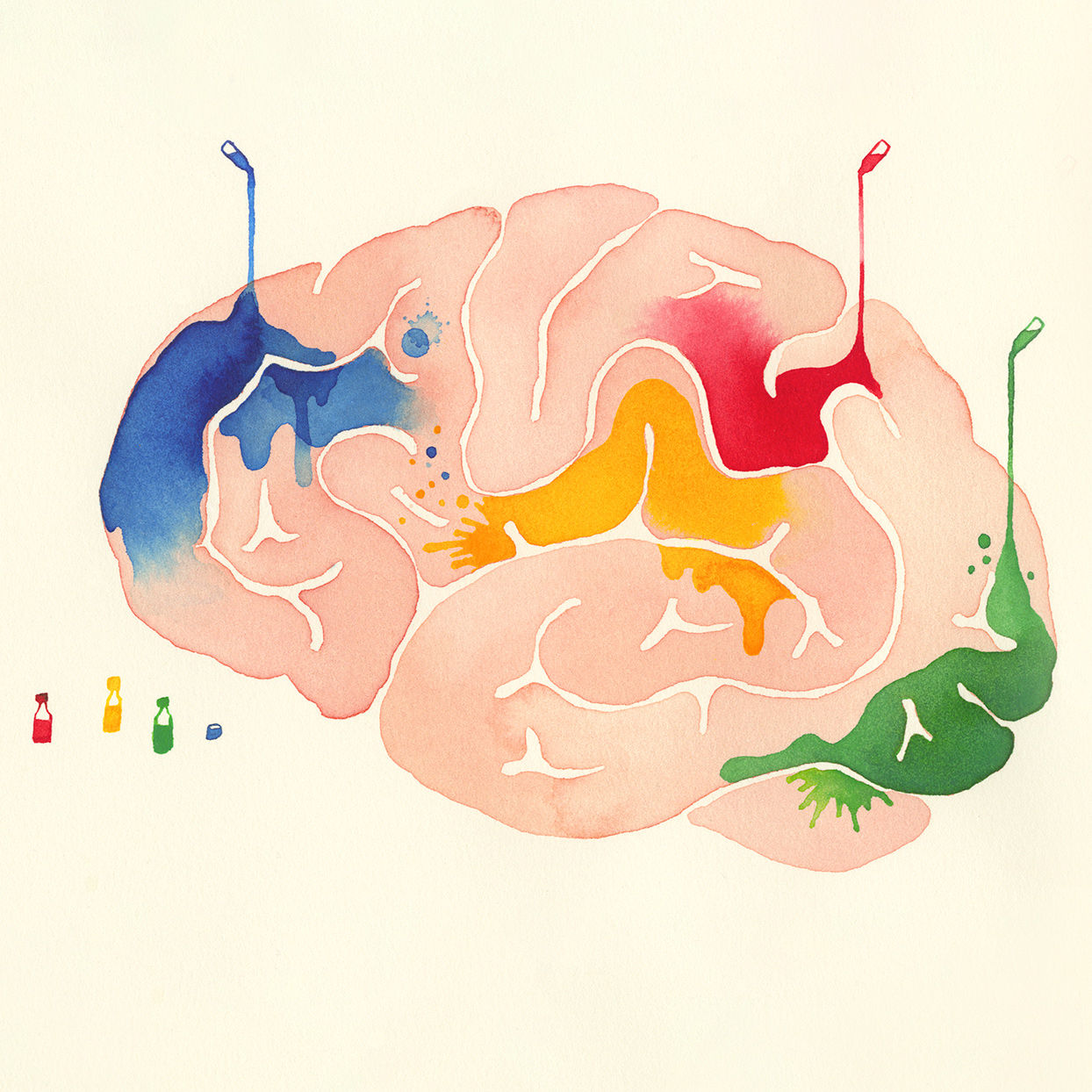 Illustration of the brain with multiple colors