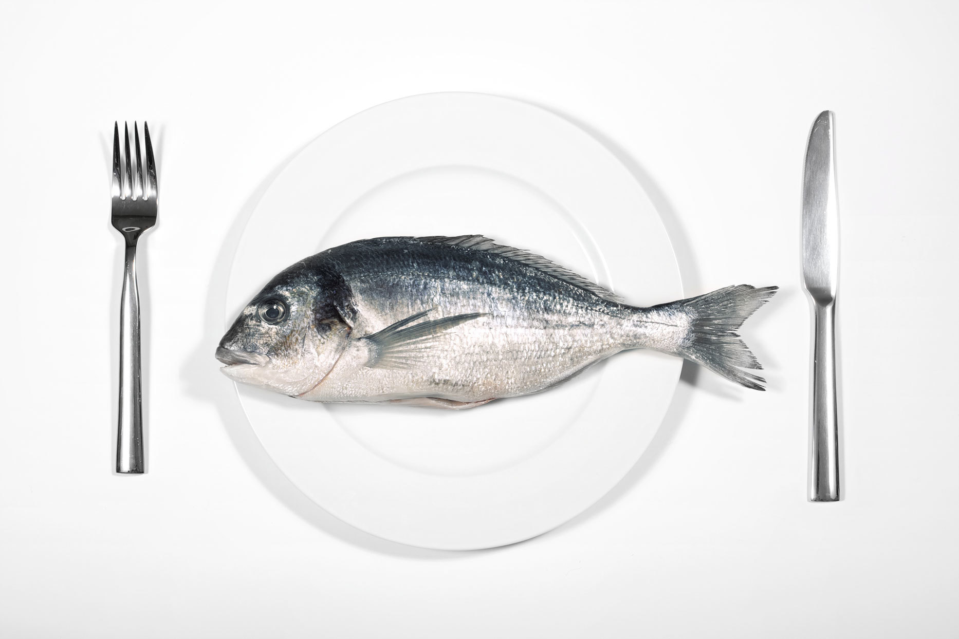 whole fish on a white plate