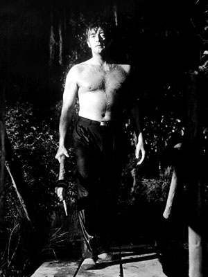 Robert Mitchum, Cape Fear