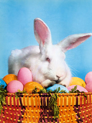 The Easter Bunny and his brethren have long been a part of our pop-cultural landscape. In film, TV, and literature, a long line of irresistible,…
