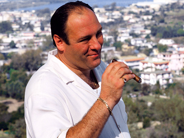 The Sopranos, James Gandolfini   Why I'd quit: I'm worried enough about making mistakes on the job. I don't need to worry about a trip out on a boat or…