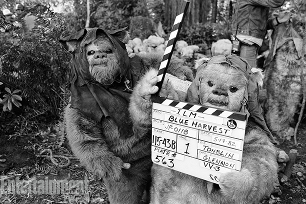 Star Wars: Episode VI - Return of the Jedi | The rotund, teddy bear-like Ewoks are cute to many fans and acutely annoying to many others. That may have been the case in May 1982…