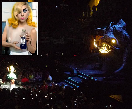 Lady Gaga   It really shouldn't surprise anyone that Lady Gaga is a Star Wars fan. After all, she could easily exchange outfits with Queen Amidala and nobody…