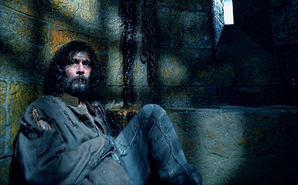 Sirius Black Was Born in November