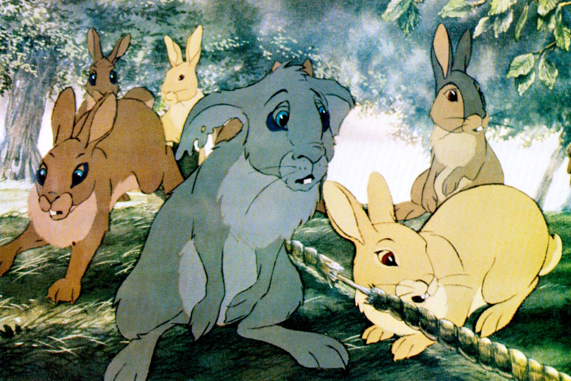 WATERSHIP DOWN, 1978, © Avco Embassy/courtesy Everett Collection