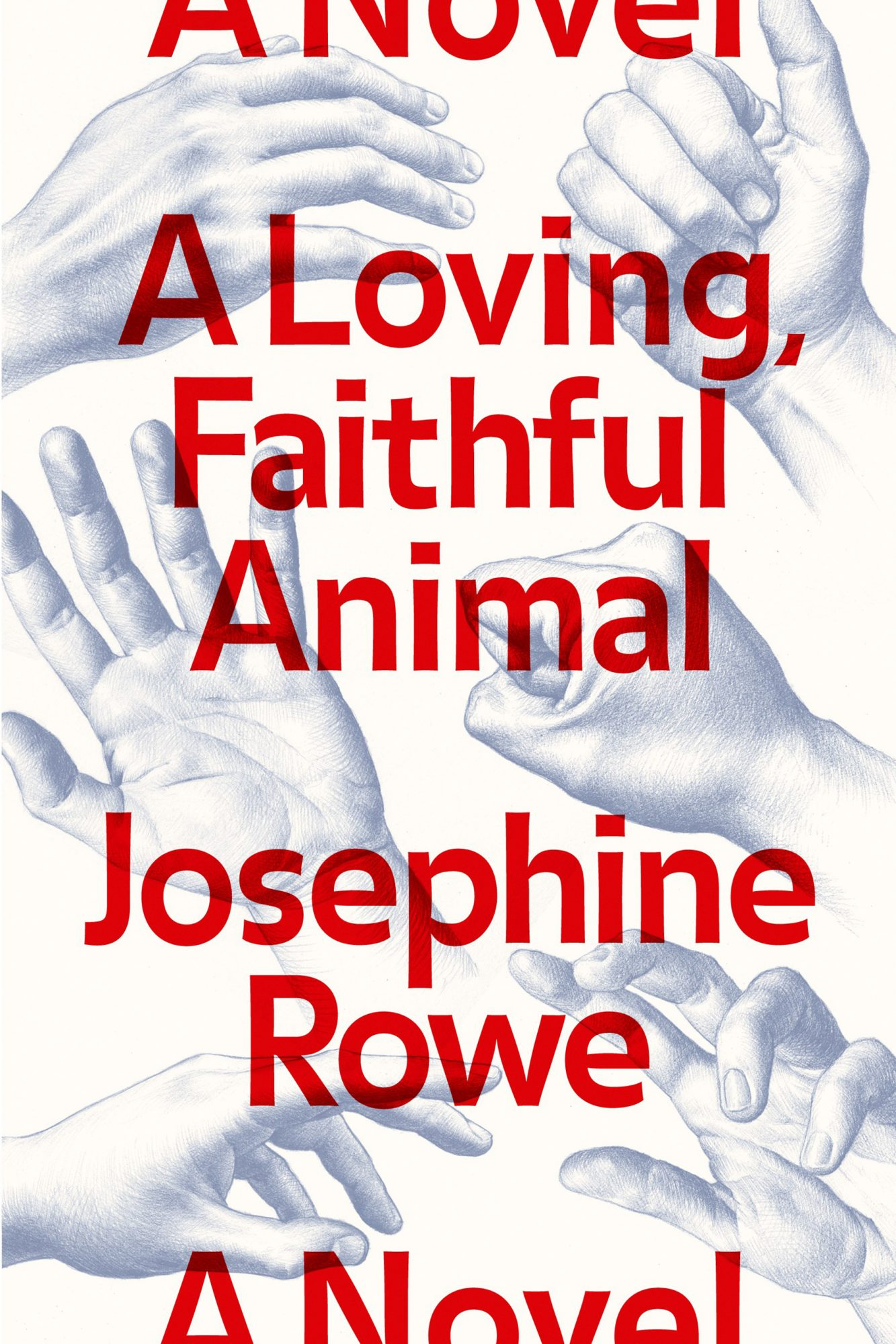 A Loving, Faithful Animal, Josephine Rowe