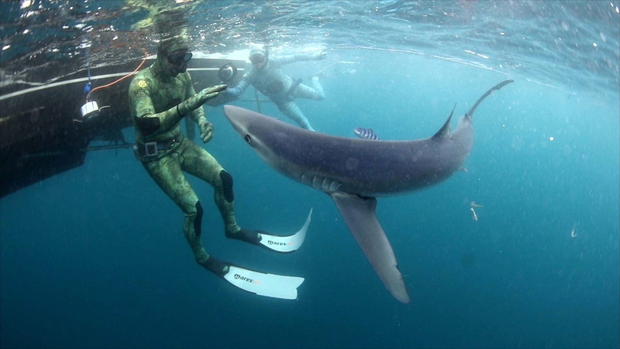 Monster Tag - Aaron Rodgers Underwater