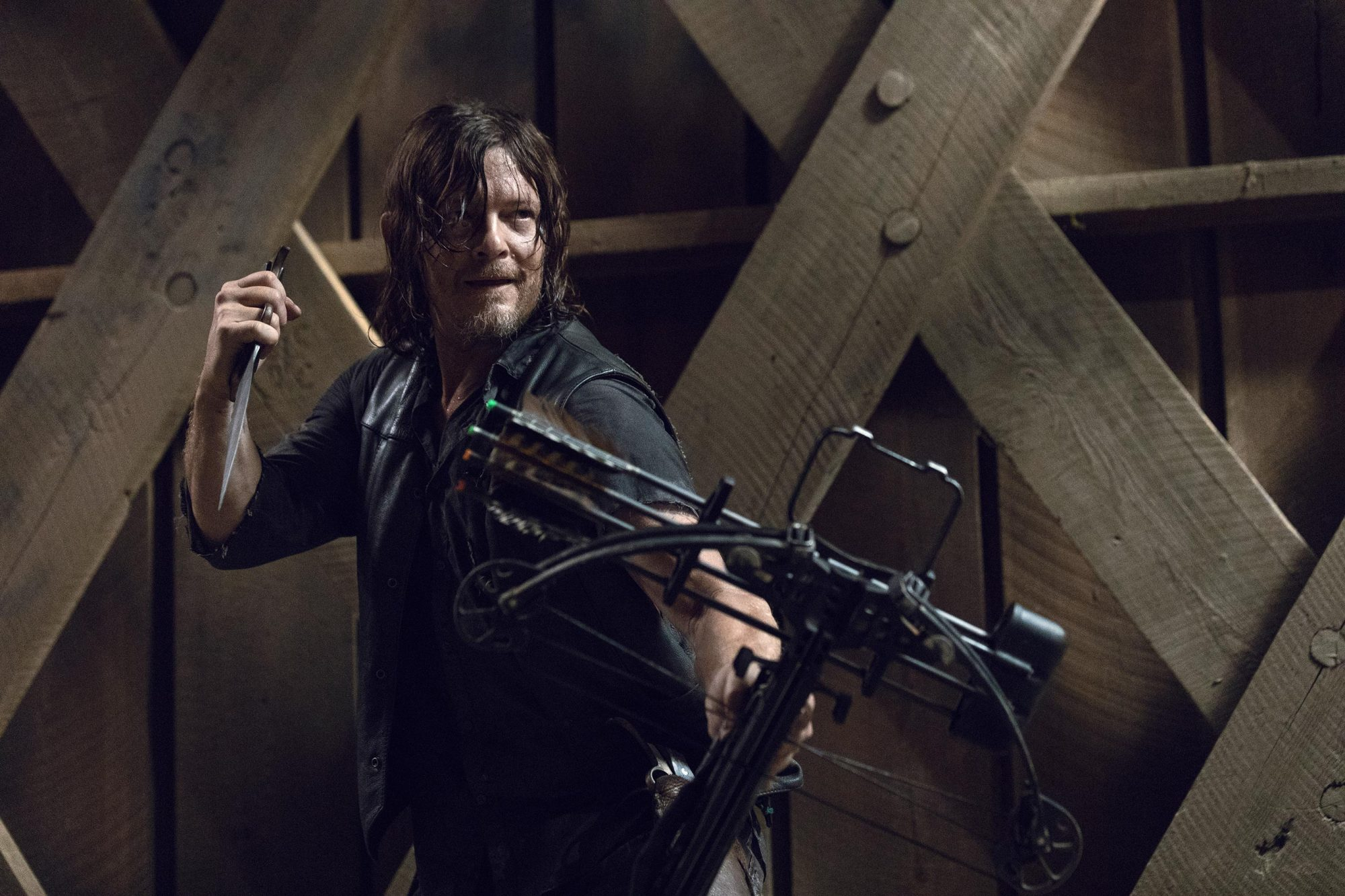Norman Reedus as Daryl Dixon