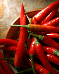 images-sys-201002-a-cabinet-chilies.jpg