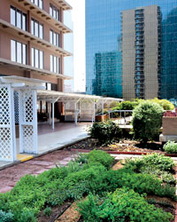 Rooftop Gardens: Fairmont Dallas Hotel
