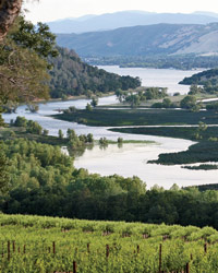 California Wine Country: Red Hills Lake County