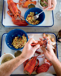 Oysters: Steamed Lobster