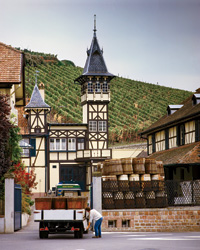 Wine Guide Preview: Trimbach