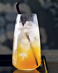 images-sys-2010-r-cocktail-harvard-cooler.jpg