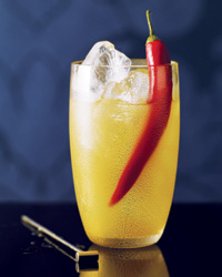images-sys-2010-r-cocktail-hot-fizz.jpg