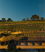 South African Wine Travel: Affordable Wine Country Hotels
