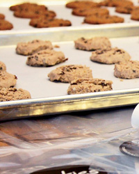 Bake Sale Recipes: Dried Cranberry and Chocolate Cookies