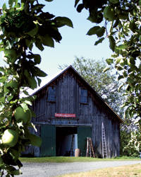 Hard Cider Buzz: Farnum Hill Ciders