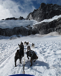 Alaska Travel: Dogsled Tour