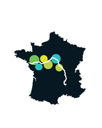 French Wine: The Loire Valley
