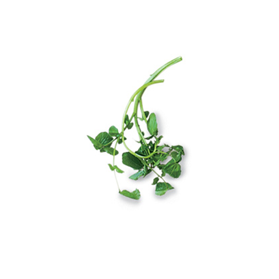 Tender Greens: Watercress