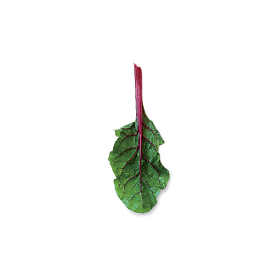 Tougher Greens: Swiss Chard