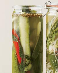 Spicy Dill Quick Pickles