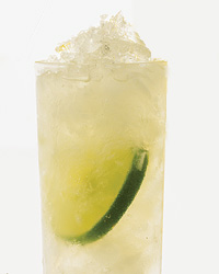 images-sys-fw2008-c-parsley-gin-julep.jpg
