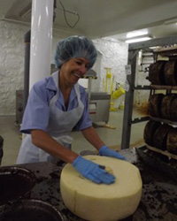 original-201207-a-laura-werlin-fw-cheesemaster-manufacture.jpg