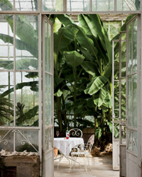 original-201210-a-bordeaux-travel-greenhouse.jpg