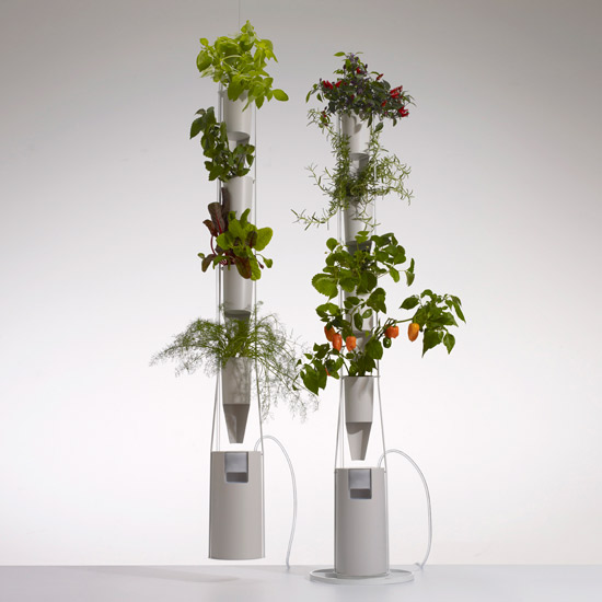 DIY Kit: Soil-Free Plants