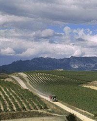 Rioja Wine Producers