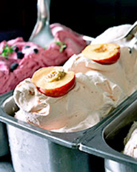 article-201301-ss-best-ice-cream-capogiro.jpg