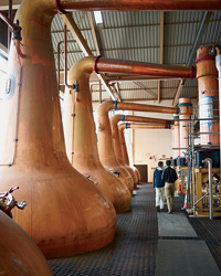 Scotland Travel: Distillery Tour