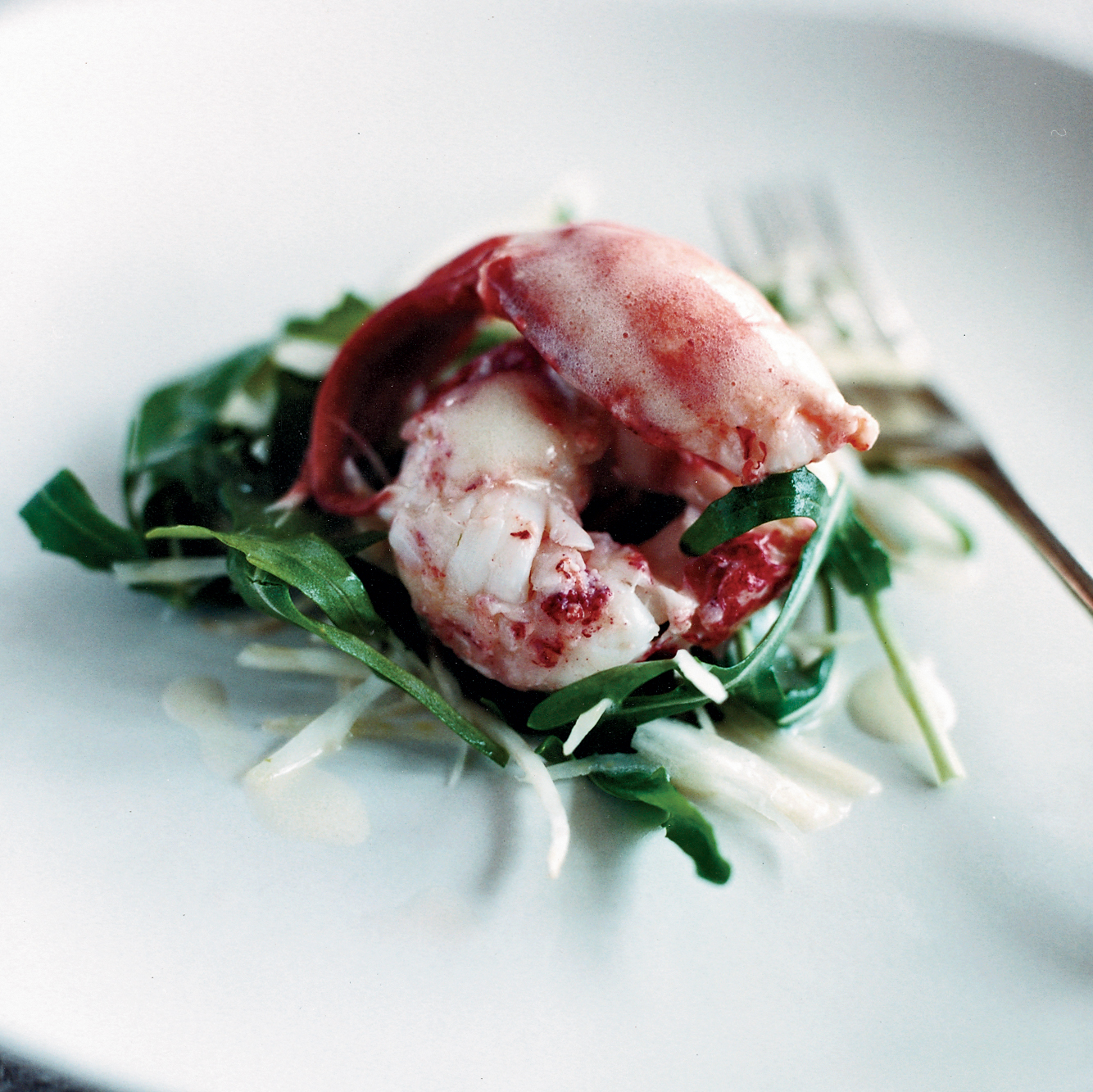 <p>Lobster and Fennel Salad</p>