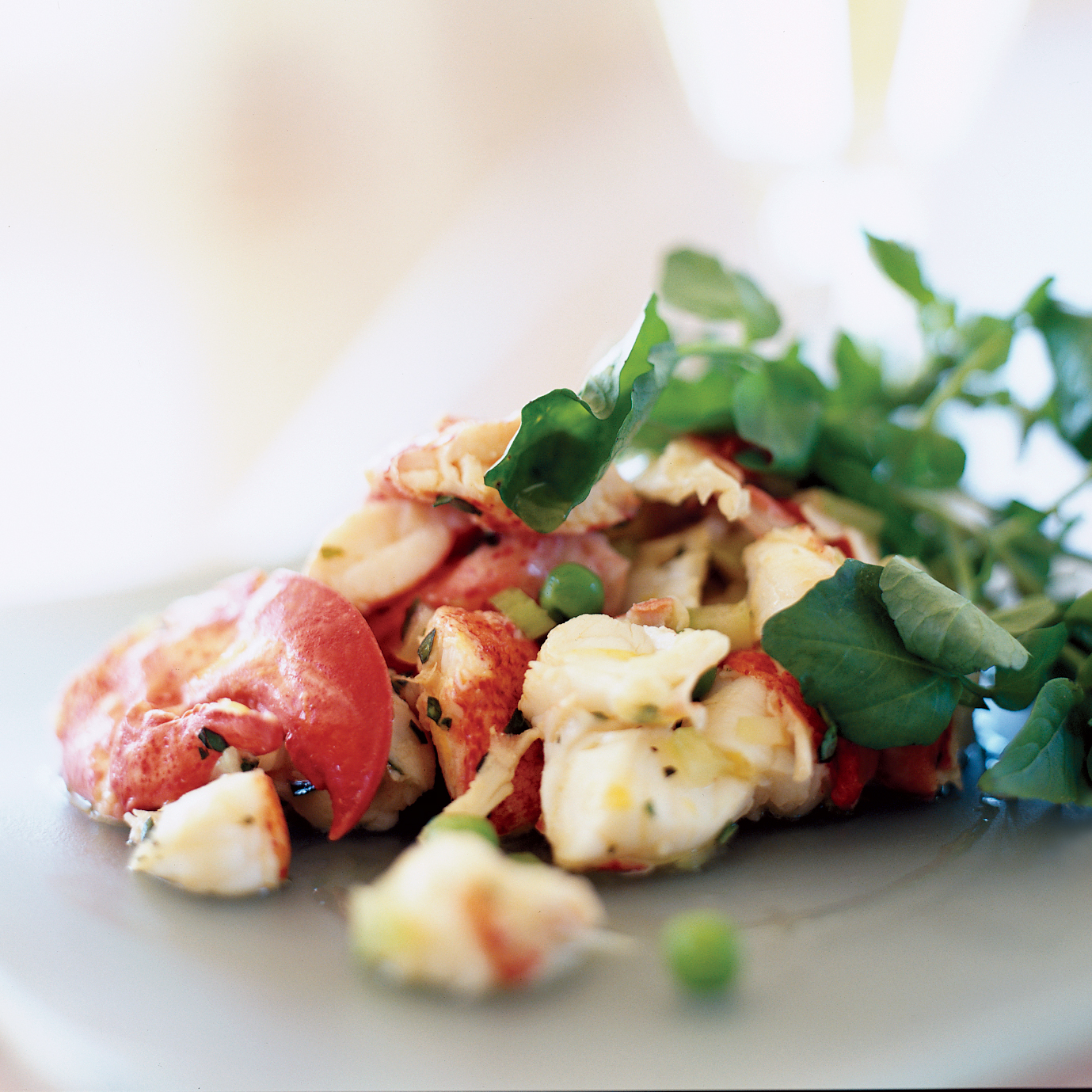 Point Lookout Lobster Salad Recipe Martha Greenlaw Linda Greenlaw