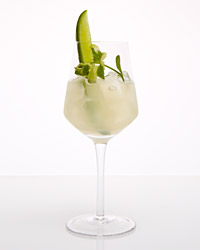 original-2013-r-cucumber-mint-cooler.jpg
