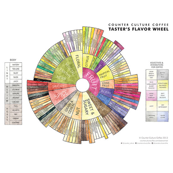 hd-201401-a-counter-culture-coffee-tasters-wheel.jpg
