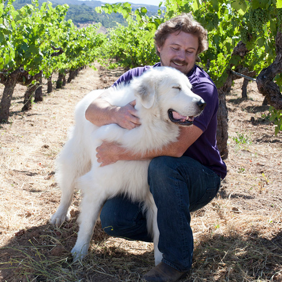 original-201403-HD-winery-pets-bedrock.jpg