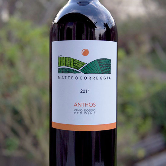 3 Wines to Drink Now, Like a Killer $20 Piedmontese Red